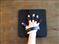 手のひらボード(縮小59×45)